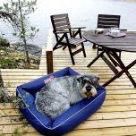 Cazo koiranpeti Outdoor, yksivärinen | DreamPetStore