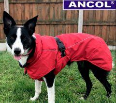 Ancol - Extreme Blizzard takki, unisex - Punainen - Eri kokoja
