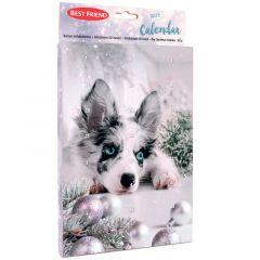 Best Friend Koiran Joulukalenteri Tasty, 120 g
