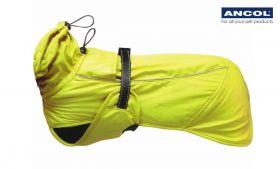 Ancol - Extreme Blizzard takki, unisex - Neon - Eri kokoja