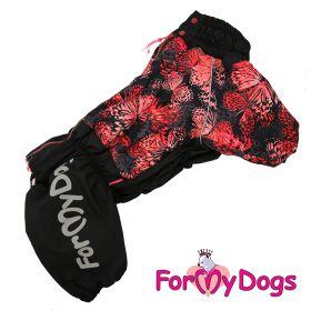 ForMyDogs - Butterflies talvihaalari, nartun malli, keskikokoinen / iso koira - Eri kokoja