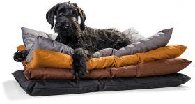 Hunter Gent Antibakteerinen koiranpeti