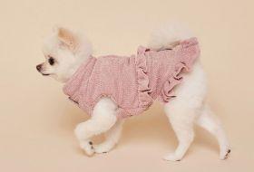 PuppyGallery - Chloe takki - Eri kokoja