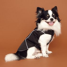 PuppyGallery - Rockies parka takki - Eri kokoja