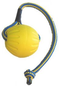 Swing & Fling Durafoam Pallo köydessä