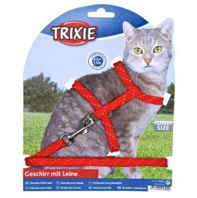 Trixie Valjas- ja talutinsetti kissanpennulle