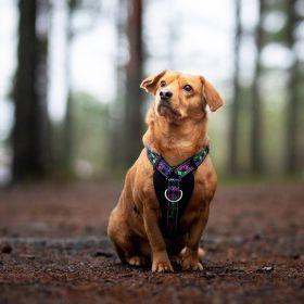 Finnero Rescue valjaat koiralle
