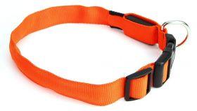 LED Oranssi panta