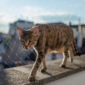 Duvo+ Kissan turvaverkko parvekkeelle