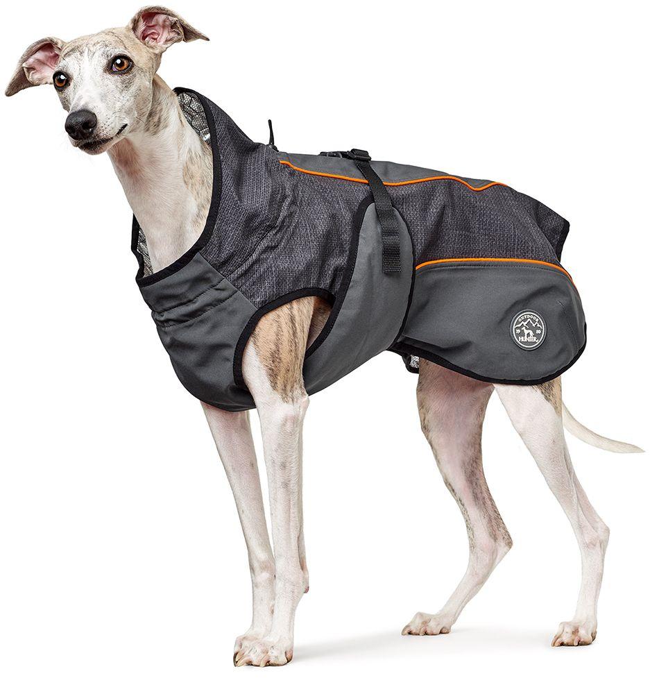 Koiran takki | DreamPetStore