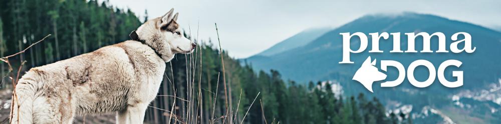 PrimaDog-täysravinnot koiralle edullisesti