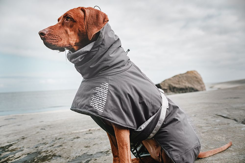 Hurtta takki koiralle | DreamPetStore