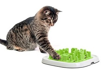 Kissan tarvikkeet | DreamPetStore